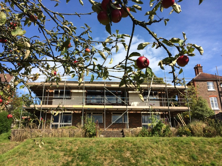 20140813 Apples and Scaffolds