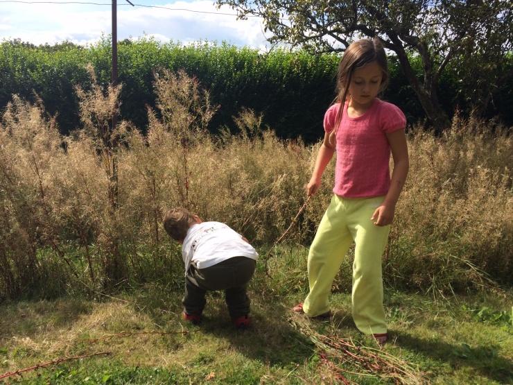 20140813 Pulling Weeds